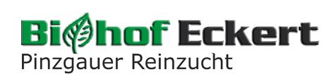 Pinzgauer Biohof Eckert